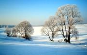 梦幻冬季美丽雪景壁纸 风景壁纸