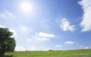 青青草原草原天空摄影壁纸 风景壁纸