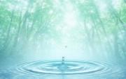 清新夏日 水 空 绿叶壁纸 梦幻夏日图片 阳光树林水滴图片 1920 1200 清新夏日水 空 绿叶壁纸 风景壁纸