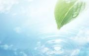 清新夏日 水 空 绿叶壁纸 梦幻夏日图片 阳光绿叶水滴图片 1920 1200 清新夏日水 空 绿叶壁纸 风景壁纸