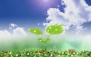 清新夏日 水 空 绿叶壁纸 梦幻夏日图片 水 空 绿叶图片 1920 1200 清新夏日水 空 绿叶壁纸 风景壁纸