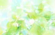 清新夏日 水 空 绿叶壁纸 梦幻朦胧 晴空绿叶图片 1920 1200 清新夏日水 空 绿叶壁纸 风景壁纸