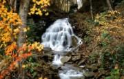 秋意无限美秋天风景 风景壁纸