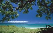 日本冲绳海岸风光 风景壁纸