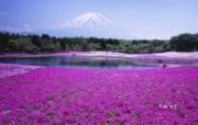 日本风光风景摄影Bing主题宽屏壁纸 壁纸2 日本风光风景摄影Bi 风景壁纸