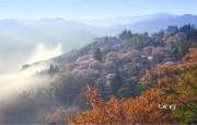 日本风光风景摄影Bing主题宽屏壁纸 壁纸3 日本风光风景摄影Bi 风景壁纸
