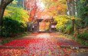 日本风光风景摄影Bing主题宽屏壁纸 壁纸10 日本风光风景摄影Bi 风景壁纸