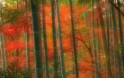 日本特色风光壁纸 风景壁纸