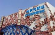 上海世博会 壁纸27 上海世博会 风景壁纸
