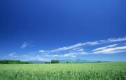 天空大地蓝天白云 风景壁纸