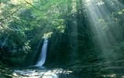 Windows 7世界名胜高清壁纸 亚洲篇 日本 赤目四十八瀑的晨曦 Sunlight Streaming Through trees Akame Shijyuhachi Waterfall Japan Windows 7世界名胜高清壁纸亚洲篇 风景壁纸