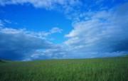 夏日广阔草原风光 广阔无垠的草原风光壁纸图片壁纸 夏日广阔草原风光 风景壁纸