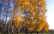 西伯利亚精美自然风光壁纸 风景壁纸