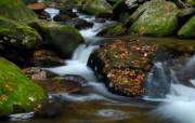 溪流河水高清壁纸 风景壁纸