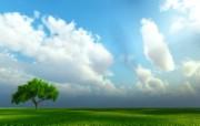 新西兰郊外风景壁纸 新西兰 蓝天白云原野图片壁纸 新西兰郊外风景壁纸 风景壁纸