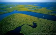 上帝之眼 Yann Arthus Bertrand 扬恩 亚瑟空中摄影奇景壁纸北美篇 鸟瞰美国 沼泽国家公园的红树林图片壁纸 扬恩・亚瑟空中摄影奇景 北美篇 风景壁纸