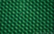 上帝之眼 Yann Arthus Bertrand 扬恩 亚瑟空中摄影奇景壁纸北美篇 鸟瞰美国 纽约市新洋基体育场图片壁纸 扬恩・亚瑟空中摄影奇景 北美篇 风景壁纸