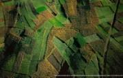 上帝之眼 Yann Arthus Bertrand 扬恩 亚瑟空中摄影奇景壁纸北美篇 鸟瞰危地马拉 危地马拉城附近的农田图片壁纸 扬恩・亚瑟空中摄影奇景 北美篇 风景壁纸