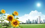 阳光灿烂的夏天 童话般城市风景壁纸 阳光灿烂的夏天 风景壁纸