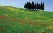 意大利风光风景高清宽屏壁纸 壁纸19 意大利风光风景高清宽 风景壁纸