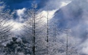 中国名山 冬天雪景壁纸 风景壁纸