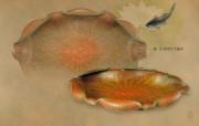 古色古香 北京故宫博物院珍品文物和历届主题展 彩漆荷叶式盏托图片壁纸 北京故宫博物院珍品文物展 广告壁纸