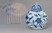 古色古香 北京故宫博物院珍品文物和历届主题展 青花折枝纹扁瓶图片壁纸 北京故宫博物院珍品文物展 广告壁纸