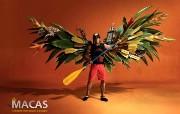 创意无限 Fly Macas Tame Ecuador航空公司创意广告 创意广告设计壁纸第四辑 广告壁纸