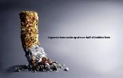 创意无限 公益广告 不要乱扔烟头 Cigarette Butts are Litter too 创意广告设计壁纸第四辑 广告壁纸