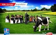 创意平面广告设计壁纸 第七集 五星级的照顾 AYNES牛奶广告设计 创意平面广告设计壁纸第七集 广告壁纸