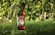 苹果酒 Apple Beer 啤酒广告创意 创意无限平面广告设计壁纸第五辑 广告壁纸