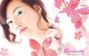 韩国HERA化妆品模 广告壁纸
