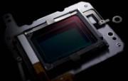 佳能EOS7D单反数码相机 壁纸15 佳能EOS7D单反数 广告壁纸