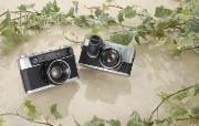1963年的奥林巴斯古董相机 Olympus Cameras PEN F Olympus Cameras 35SC Olympus 奥林巴斯70年经典相机壁纸上辑 广告壁纸