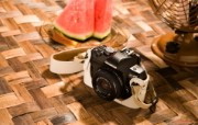 Olympus 奥林巴斯相机纪念壁纸 三 奥林巴斯E 410 数码相机 Oplympus E410 Digital SLR Camera Olympus 奥林巴斯相机三 广告壁纸