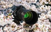 Olympus 奥林巴斯相机纪念壁纸 三 奥林巴斯 E 330 数码相机 2006 Oplympus Zuiko Digital Camera Olympus 奥林巴斯相机三 广告壁纸