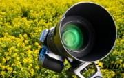Olympus 奥林巴斯相机纪念壁纸 三 奥林巴斯单反相机E 500 Oplympus Zuiko Digital SLR Camera Olympus 奥林巴斯相机三 广告壁纸
