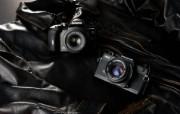 Olympus 奥林巴斯相机纪念壁纸 三 奥林巴斯单反相机 OLYMPUS ZUIKO DIGITAL SLR Cameras Olympus 奥林巴斯相机三 广告壁纸