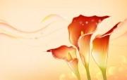 Photoshop设计花朵 花纹壁纸 二 壁纸33 Photoshop设 广告壁纸