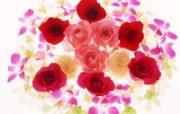 1600花朵背景 2 10 1600花朵背景 花卉壁纸
