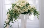 白色花朵 2 6 白色花朵 花卉壁纸