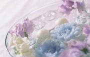 插花艺术 花卉图片 Desktop Wallpaper of Flower Art 插花艺术祝福的花饰 花卉壁纸