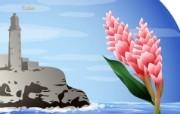 国家与鲜花 2 17 国家与鲜花 花卉壁纸