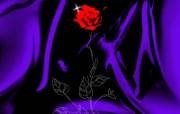 合成花卉 3 8 合成花卉 花卉壁纸