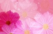 合成花卉 4 17 合成花卉 花卉壁纸