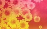 合成花卉 4 13 合成花卉 花卉壁纸