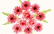 1600花朵背景 1 9 1600花朵背景 花卉壁纸