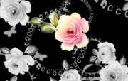 合成花卉 1 16 合成花卉 花卉壁纸