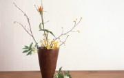 花卉插花艺术图片 Flower Art Desktop Wallpaper 花卉艺术插花艺术欣赏四 花卉壁纸