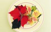 花艺大餐 2 12 花艺大餐 花卉壁纸